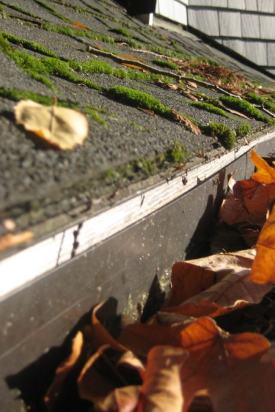 gutter cleaning strongsville